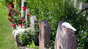 Gravstenar på Lidingö kyrkogård. Foto Martin Hultén 2011.