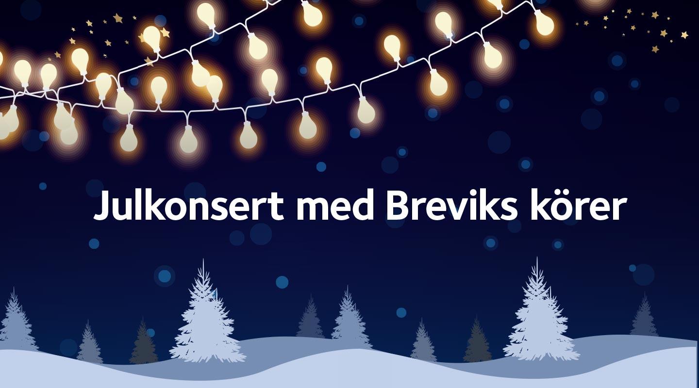 Julkonsert med Breviks körer II - Lidingö församling