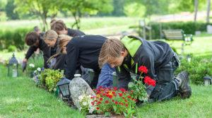 Plantera blommor. foto Manne Hermansson